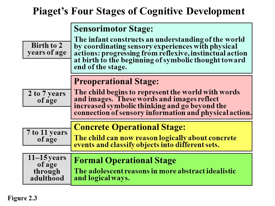 Intellectual development for Moral development 0 19 years chart